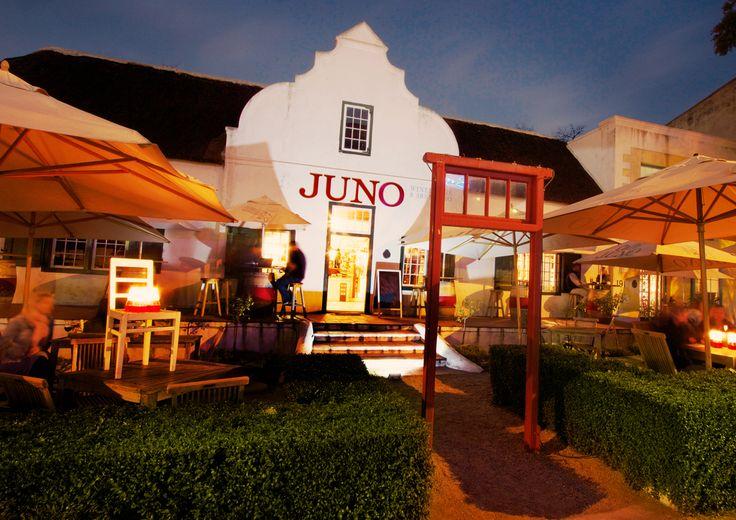 Juno Wine Cafe in Paarl, Western Cape