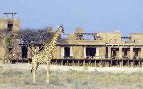 Wildlife literally walks past your front door.