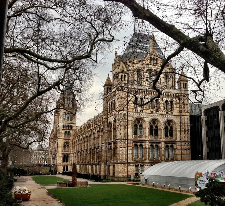 Natural Science Museum @ London