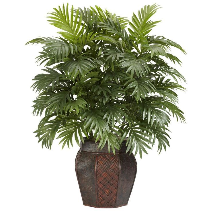 Add elegance to your #home with this decorative 38-inch Areca palm plant. This silk plant features durable polyester construction and comes in lovely planter.