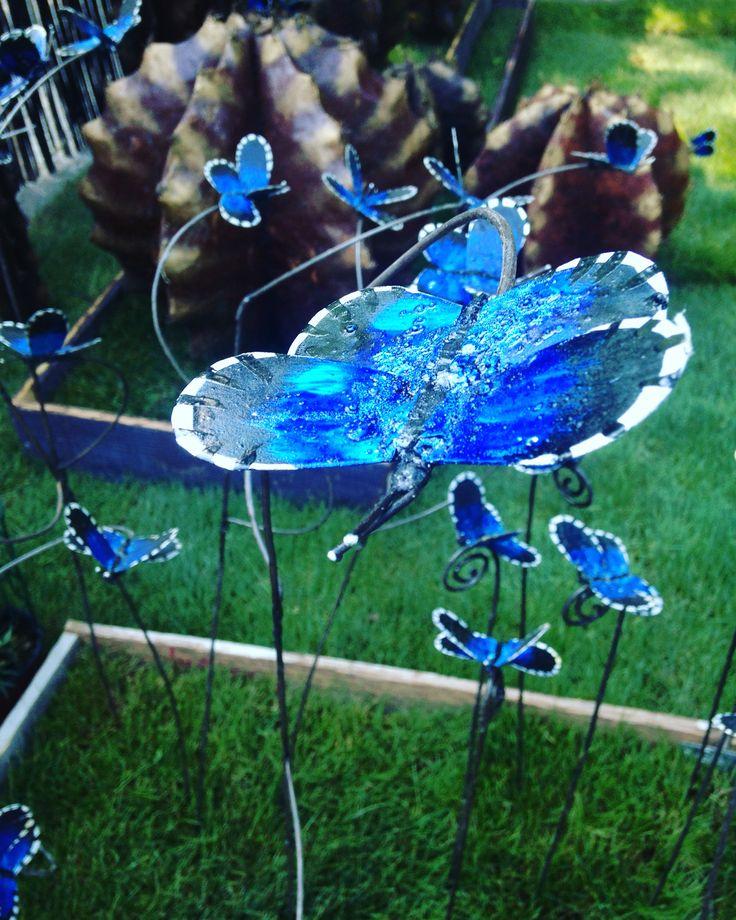 Butterflies in Milano 2016