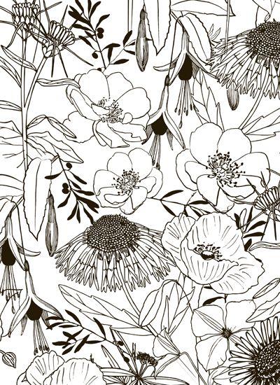 wrapping paper: Jardin des Plantes   jurianne matter for Ompak