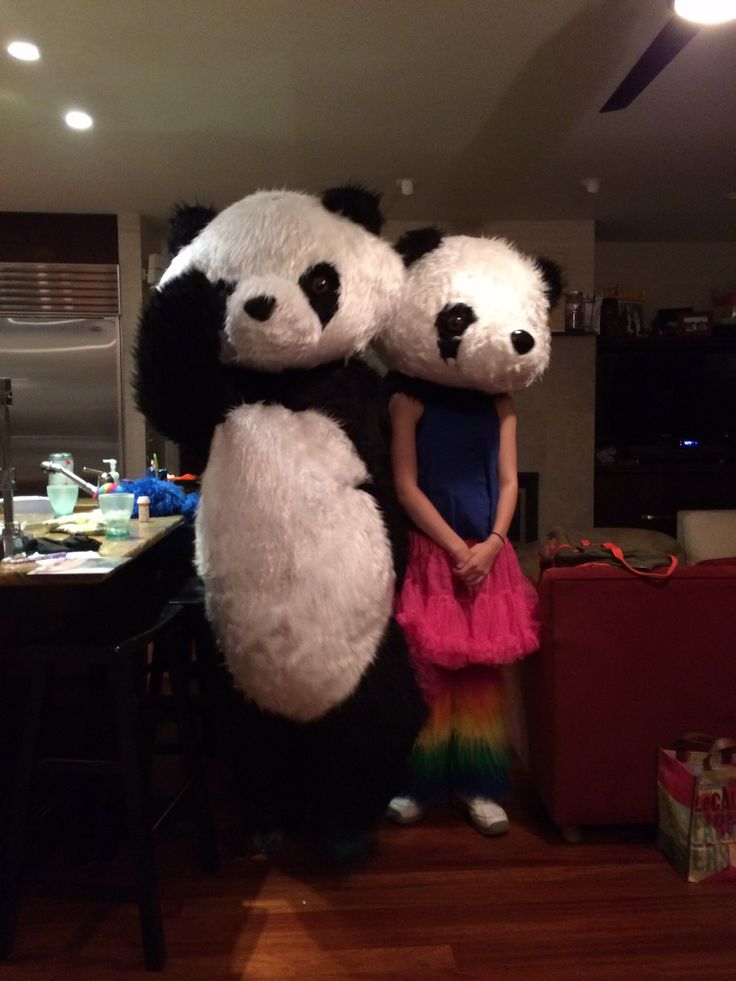 Pandas in the living room