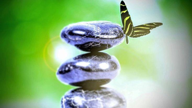 A betegségek kialakulásának rendszere- Az új orvostudomány – Biologika (GNM) - http://kicsibudoar.hu/a-betegsegek-kialakulasanak-rendszere-az-uj-orvostudomany-biologika-gnm/