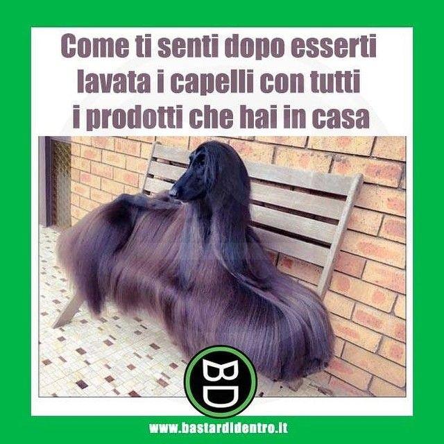 Quella sensazione di soffice e #pulito #bastardidentro #capelli…