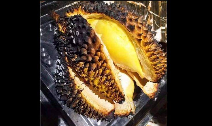 Lezatnya Durian Bakar Ini Bikin Ketagihan - indopress, Kuliner Buah durian digadang-gadang sebagai rajanya buah-buahan. Dengan aromanya yang khas dan dagingnya yang nikmat, durian menjadi buah yang sangat diburu oleh para pencinta makanan. Ada banyak olahan produk …