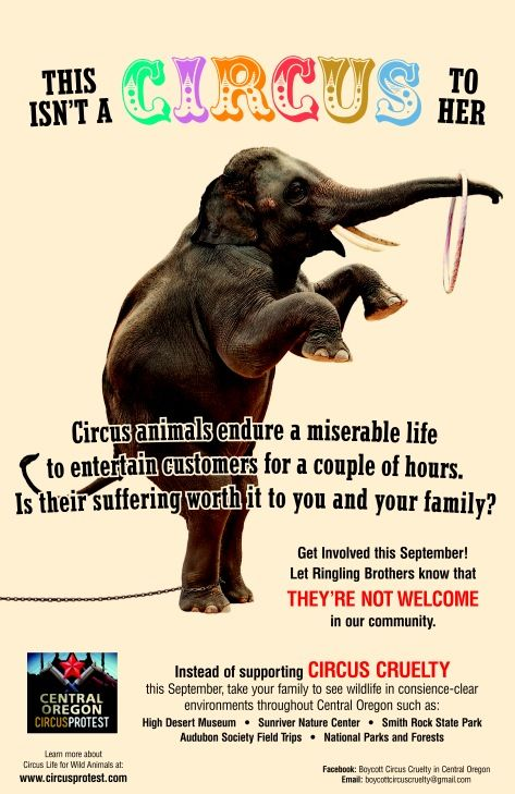 cruelty in zoos and circuses