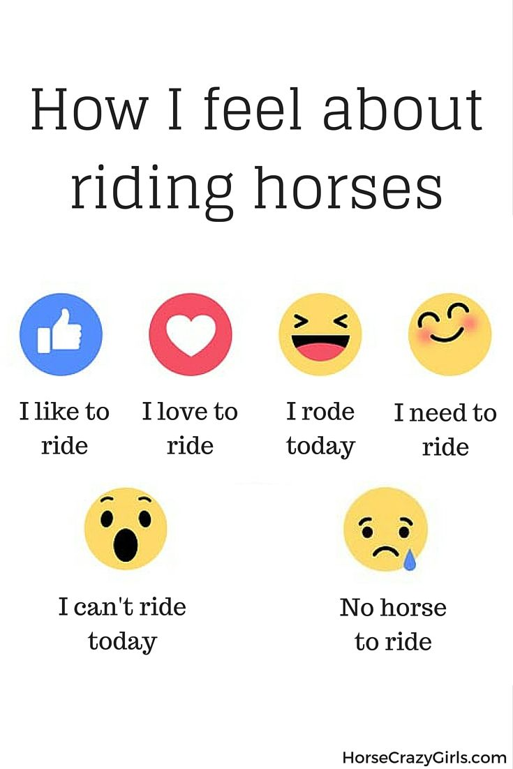 How I feel about riding my horse. You??