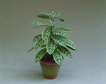Instruction sheet for large indoor plants by TheMiniatureGarden
