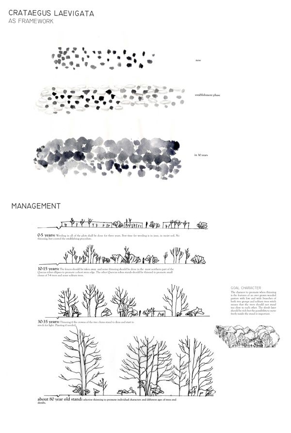 Drawings plans concepts landscape architecture 10 for Gis for landscape architects