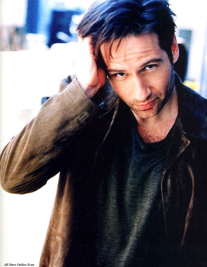 David Duchovny (Californication) Blue Green light weight pullover Caramel leather jacket