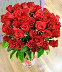 Where To Order Flowers,  http://forums.foxitsoftware.com/member/541082-wheretobuy/activities  Do not fail to remember Mom's Evening, birthdays additionally. Our visitors recommended these florists flower.