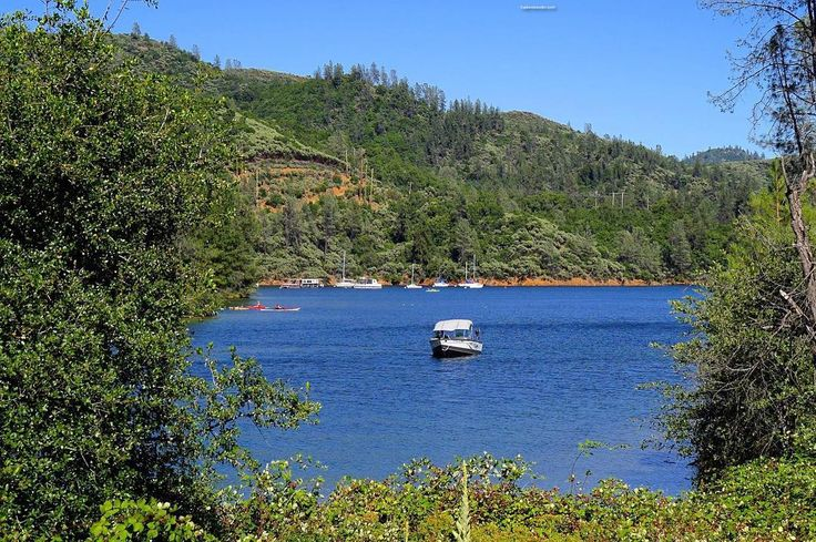 17 best images about eti instagram on pinterest the for Whiskeytown lake fishing