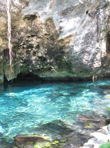 A swim in Gran Cenote (Tulum, Mexico)   Crystal clear, cool water in the stunning setting of a large, open cenote near Tulum, Mexico. Don't ...