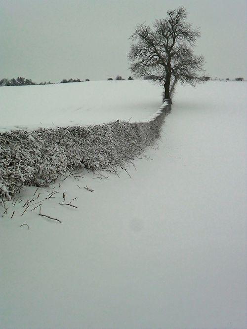Snow on a hill, Aldridge, Walsall,...