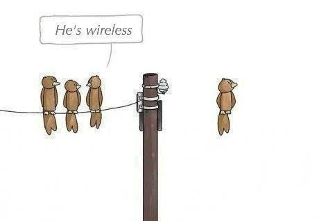 He's wireless   -- 3 birds on a power line talking about the 4th bird sitting in midair --  cute :)