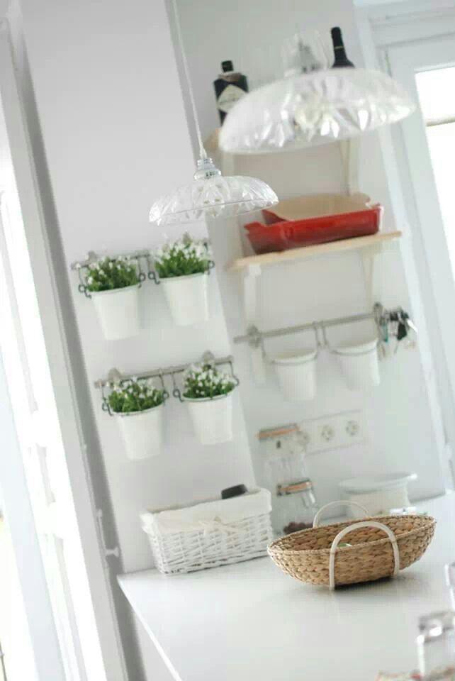 Plantas aromáticas para la cocina (ikea)