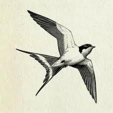 classical bird art