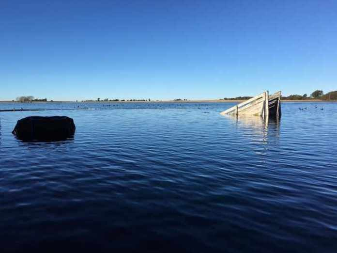 En kayac recorriendo la inundación de su campo en Winifreda (VIDEO)