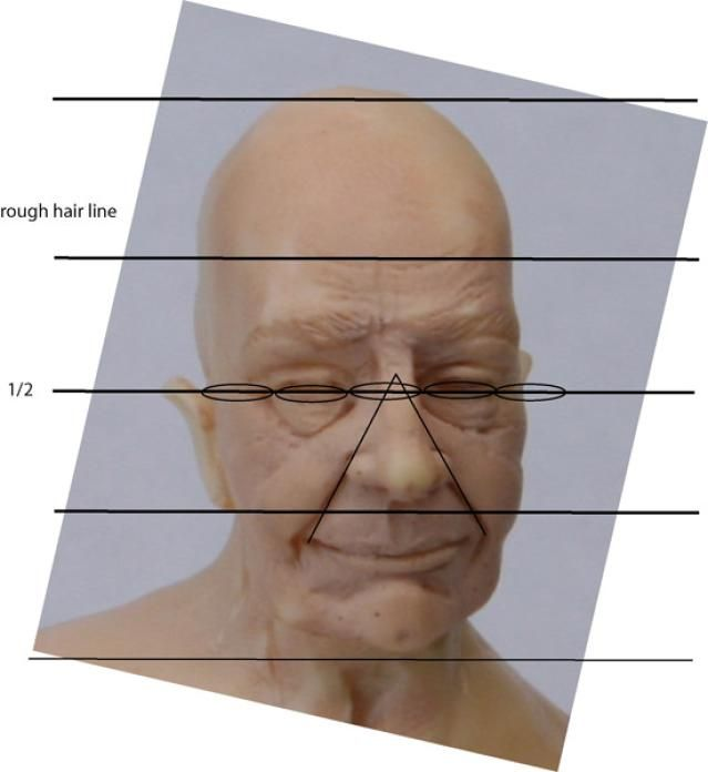 Tips for Correctly Proportioned Dolls and Figures: Proportions of Features on the Width of a Head