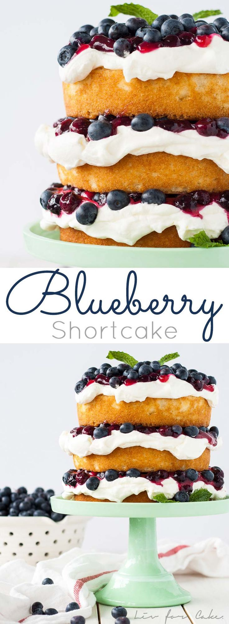 This Blueberry Shortcake is perfectly light dessert for summer. Layers of vanilla cake, whipped cream, blueberry sauce, and fresh blueberries. | http://livforcake.com