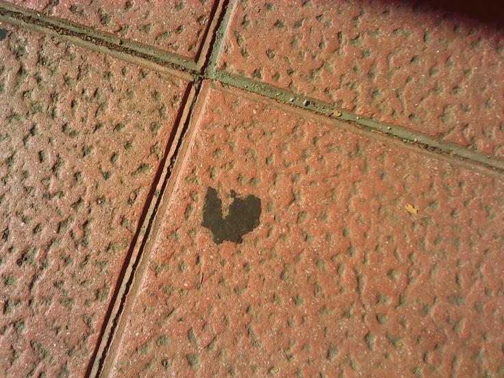 gum heart