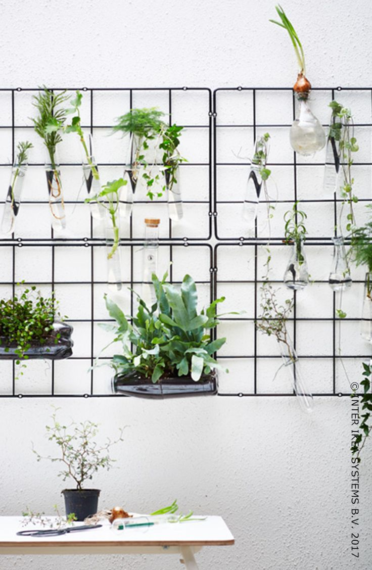 Pas besoin d'avoir un jardin énorme pour qu'il soit impressionnant ! Détournez vos ustensiles de cuisine pour créer un treillis original. Découvrez nos idées. RIMFORSA Récipient, 7,99/4 pces. #IKEABE #idéeIKEA You don't need a huge backyard to make an impressive garden! Turn your kitchen utensils into rustic looking trellis for a original look. Discover our ideas for a creative garden. RIMFORSA Container, 7,99/pce. #IKEABE #IKEAidea