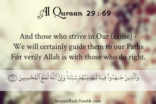 May Allah SWT guide us to the his path: Quran 2969, Quran 29 69, Noble Quran, Quran Wisdom, Allah Quran, Quran Ayat, Paths I E, Quran See, The Quran