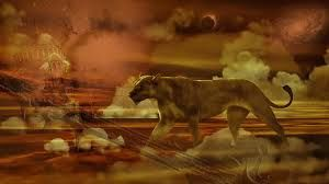Image result for cool background pics hd LIONESS