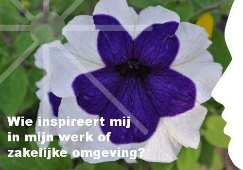 Mijn inspiratie: Wie inspireert mij  in mijn werk of   zakelijke omgeving?
