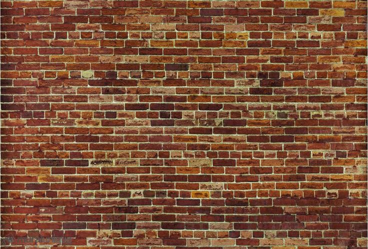 Not Just Another Brick on the Wall 12' x 8' (3,66m x 2,44m) Trompe L'oeil