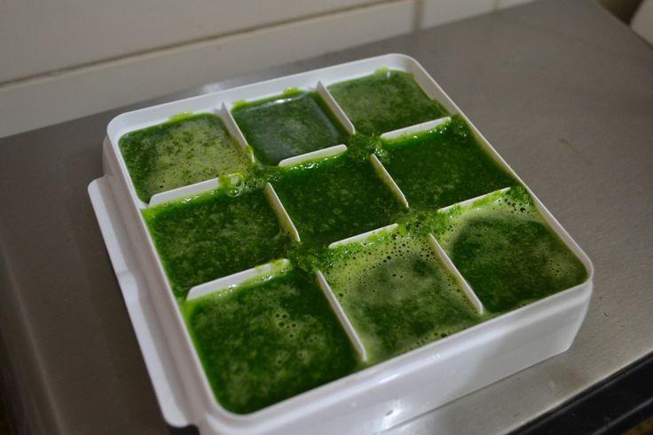 gelinho de couve. Como fazer suco verde todo dia. | Pimenta e Limao