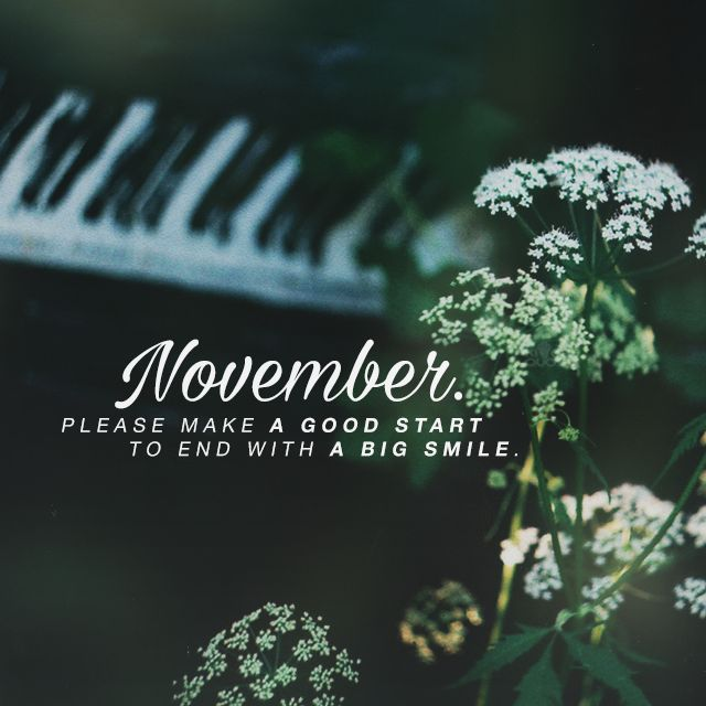 """""""November. Please make a good start to end with a big smile.""""  Kites Quotes"""