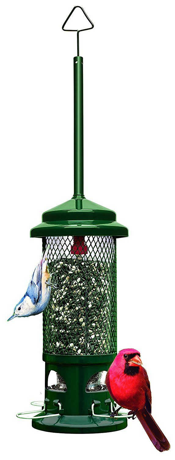 NOBODY'S GOING TO STARVE around here, even if I take down the bird feeder from April to Thanksgiving or so. [read more…]