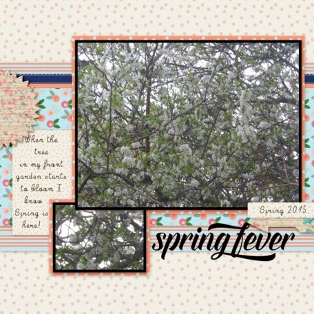 Spring Credits; Kit – Marisa Lerin – Spring Fever Template - Marisa Lerin - Layout Template 433 Font - Break the silence