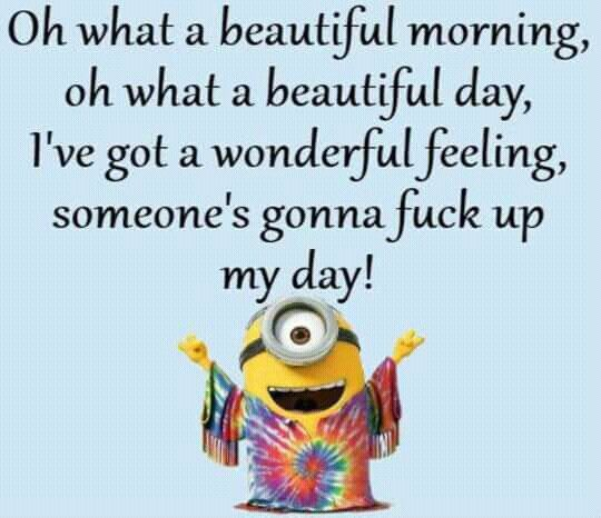 Oh what a beautiful morning, oh what a beautiful day, I've got a wonderful feeling, someone's gonna fuck up my day! - minion