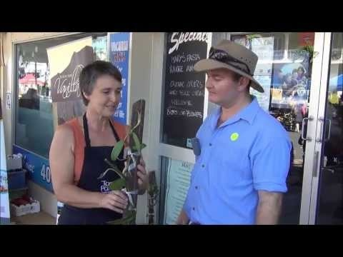 Taken at Innisfail's 'Feast of the Senses' (an annual food lovers event) Paul interviews Fiona George from Broken Nose Vanilla, a value adding grower within 100 Miles of Cairns.    Fiona discusses her products (Vanilla beans, essence, Vanilla coffee and tea, and just plain Vanilla beans), some uses for these and recovery following Cyclone Yasi.