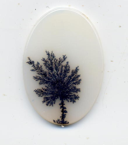 17 Best Images About Dendritic Agate On Pinterest Wood
