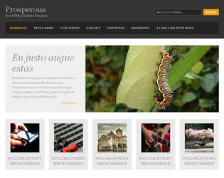Prosperous Website Template Web Site Design Arizona| #WebDesignArizona #webdesign #Website # Templatedesign