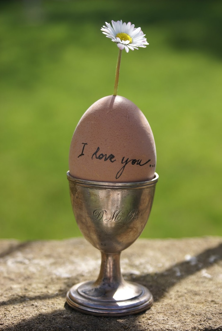 139 best Egg Cups, Cozies, and Coddlers images on Pinterest ...
