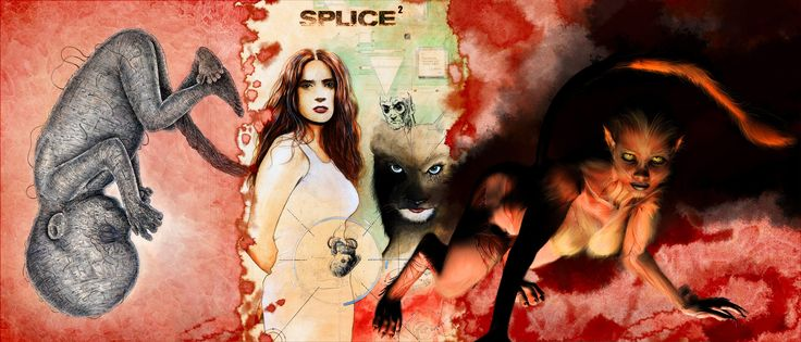 Splice Movie Wallpapers