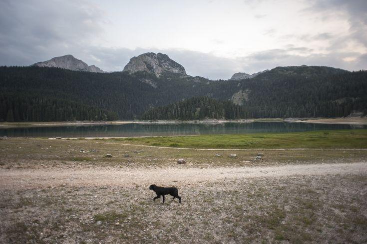 Black Lake, Montenegro. Photo by Theodore Marković.