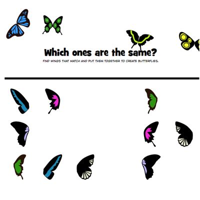 Math Games • Can you match the wings and create a butterfly? | Elementary Grades