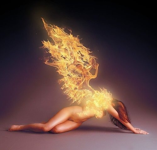 """messingwolf: """"The phoenix hope, can wing her way through the desert skies, and still defying fortunes spite; revive from ashes and rise."""" ~Miguel de Cervantes Saavedra"""