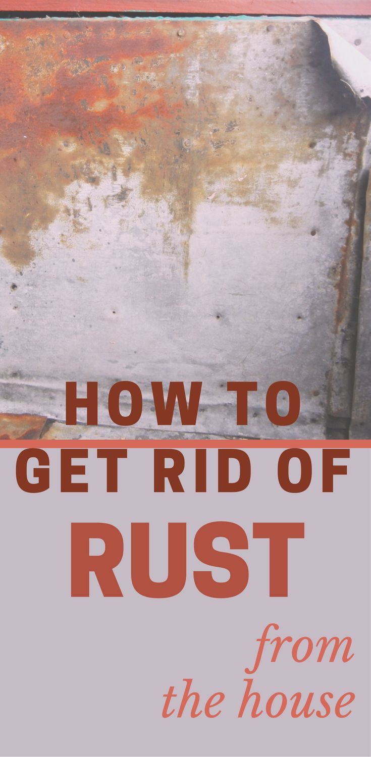 1000 Best Cleaning Tips 101 Images On Pinterest How To Get Rid Cleaning Hacks And Pest Control