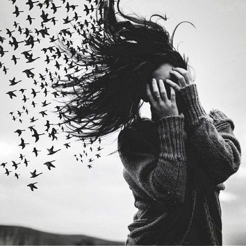 животное, офигенно, красота, птица, чёрно-белое, парень, одежда, пара, мило, нарисованное, мода, бесплатно, девушка, девчачье, гранж, волосы, прическа, хипстер, вдохновение, жизнь, любовь, о боже мой!, приятное, свитер, путешествие, винтаж, зима, <3
