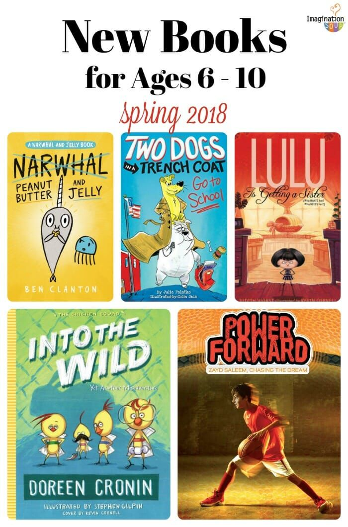 Have You Seen These New Beginning Chapter Books 2018 Class