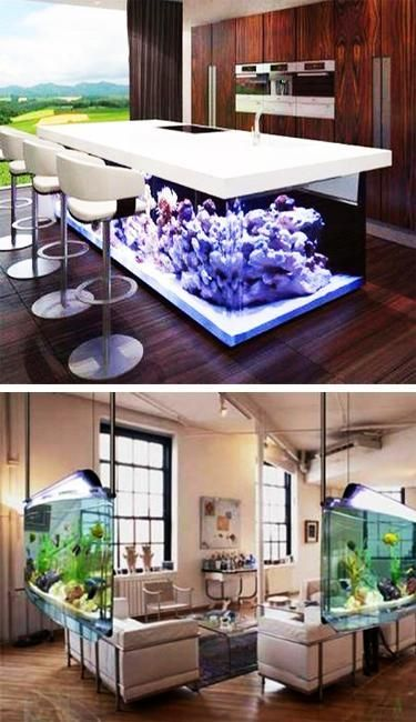 interior design with glass fish tanks