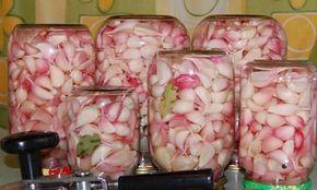Nakládaný česnek bez zavařování, který využijete během celého roku a je jako čerstvý | NejRecept.cz