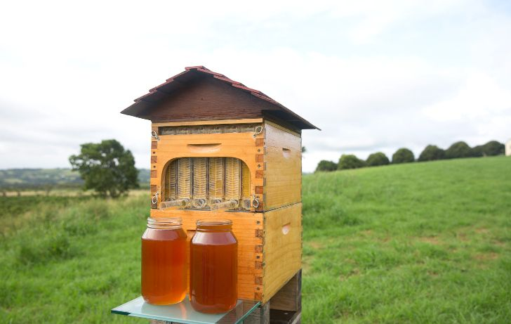 Flow Hive lets beekeepers harvest honey without disturbing the bees  --by Beverley Mitchell on 02/23/15   --Read more: Flow Hive lets beekeepers harvest honey without disturbing the bees | Inhabitat - Sustainable Design Innovation, Eco Architecture, Green Building